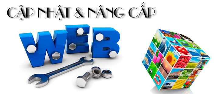 Top các công ty uy tín sửa chữa website tại Đà Nẵng