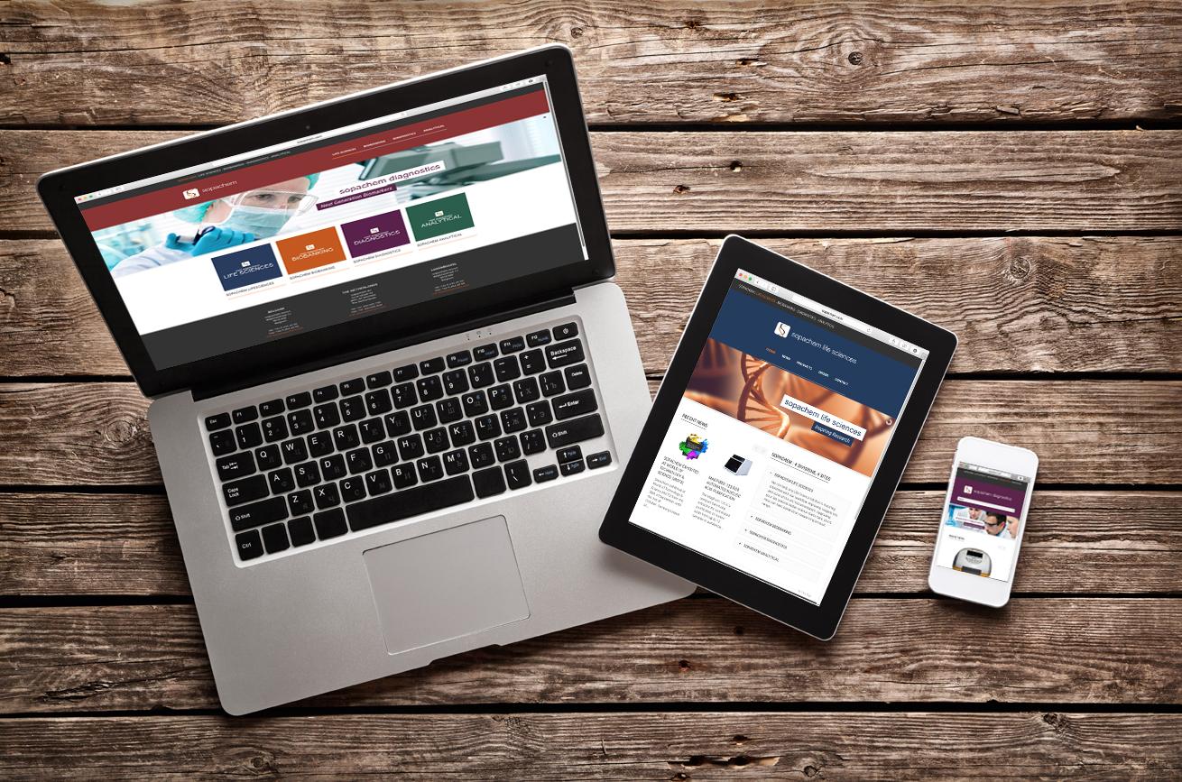 Top các công ty uy tín sửa chữa website tại Cà Mau